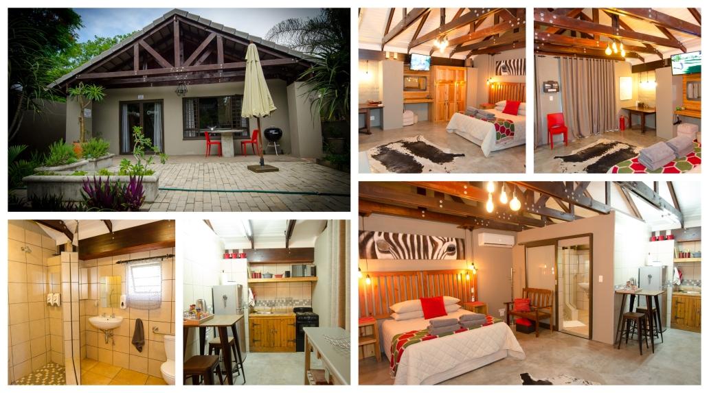 zebra suite-collage